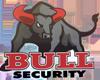 Bull Security